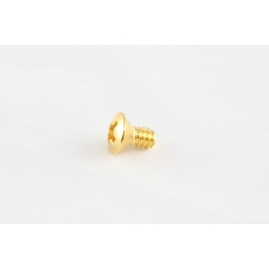 ALL PARTS GS3263002 SWITCH MOUNTING SCREWS (8 PIECES) GOLD, PHILLIPS, COUNTERSUNK, STAINLESS, 6 - 3
