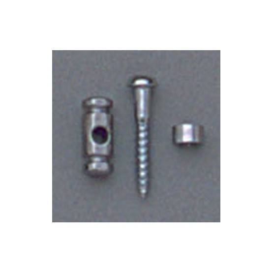 ALL PARTS AP0727010 BARREL STRING GUIDES (2) WITH SCREWS FOR GUITAR, CHROME