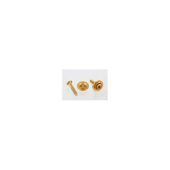 ALL PARTS AP0730002 ROUND STRING GUIDES (2) WITH SCREWS FOR GUITAR, GOLD