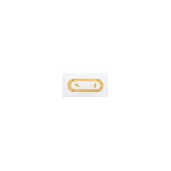ALL PARTS PC5765002 METAL PICKUP MOUNTING RING FOR STRAT SIZED PICKUP, GOLD, OVAL