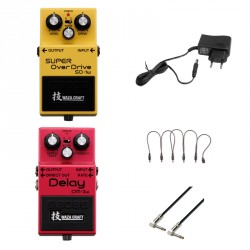 BOSS -PACK- PEDALES WAZA SD1W OVERDRIVE Y DM2W DELAY + ALIMENTADOR Y CABLES