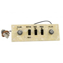 ALL PARTS PU6421000 WIRED CONTROL PLATE FOR HOFNER STYLE BASS