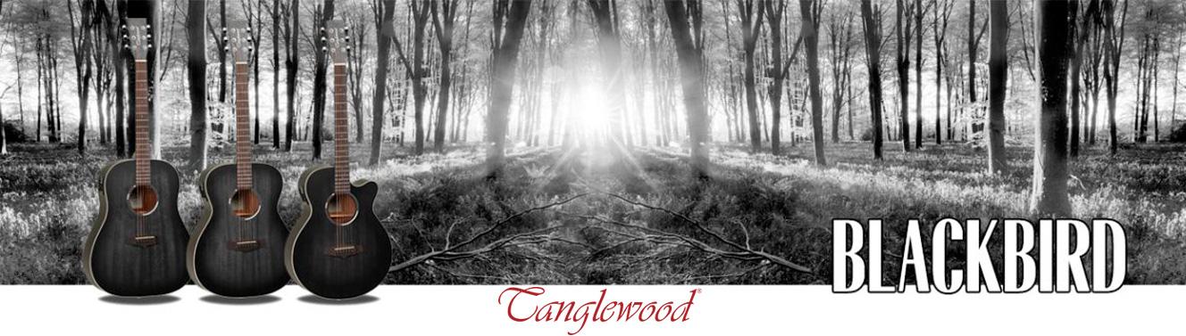 Guitarras acústicas Tanglewood Blackbird