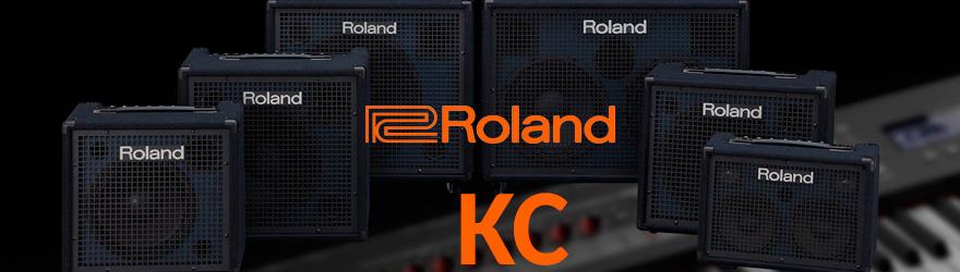 Amplificadores para teclado Roland KC